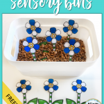 Why You Should Be Using Sensory Bins in Speech Therapy (and a Freebie)