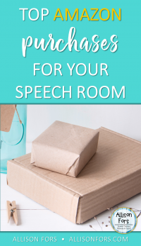 Top Amazon Purchases for Your Speech Room
