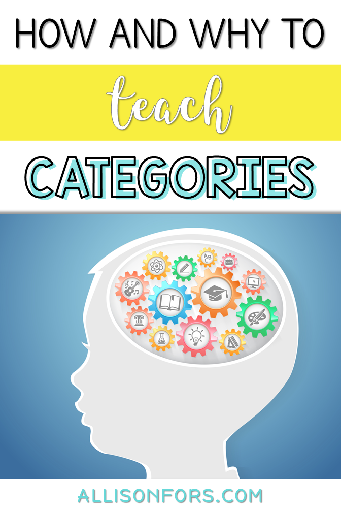 Categories in Speech Therapy