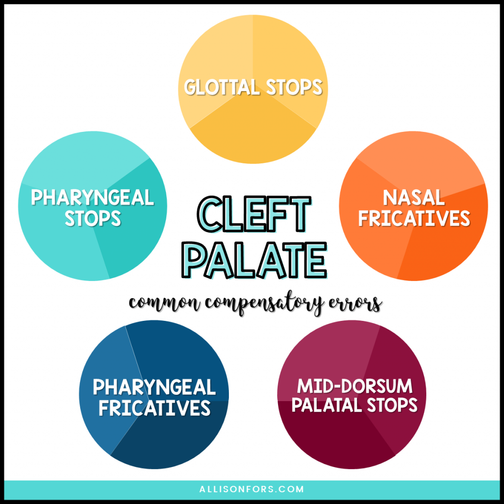 cleft palate errors